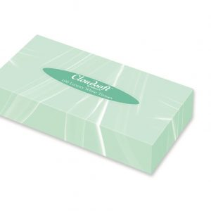 Professional Tissues White 2ply 100 sheets 21cm X 19cm